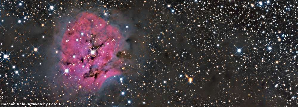 ic5146_08_PereGil_website